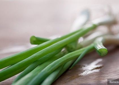 Scallions, Green Onions, Spring Onions